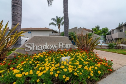 Shadow Point: Spring Valley Area