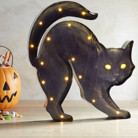 Light-up Black Cat